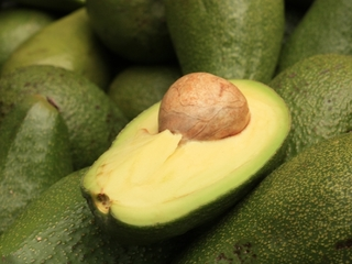 New research says eat an avocado every day
