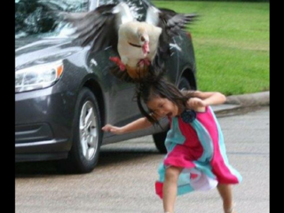 VIRAL: Photo shows goose attacking young girl