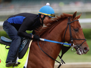 Quiz: Which are Kentucky Derby horse names?