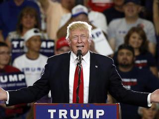 Hacked construction signs call Trump a lizard
