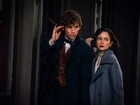 REVIEW: Harry Potter spinoff 'Fantastic Beasts'