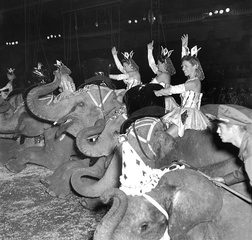Through the years: Ringling Bros. Circus