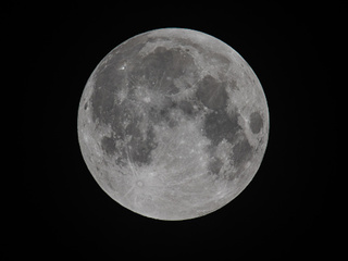 SpaceX to send 2 citizens around the moon