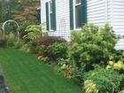 Gardener life hacks: Easy tips for green thumbs